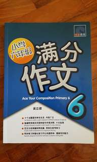 P6 chinese compo