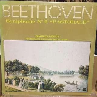 Beethoven Pastorale Vinyl plaka