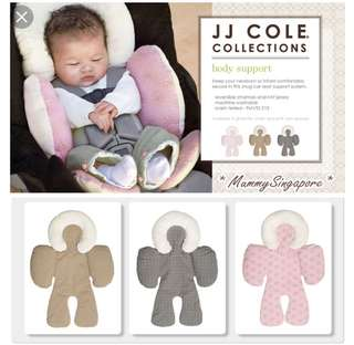 JJ Cole Infant Body Support (in grey)