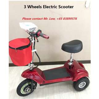 3 Wheels Electric Scooter (36V)