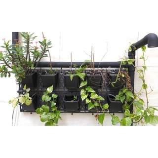 Garden Plants/Flowers Container (for vertical mount)