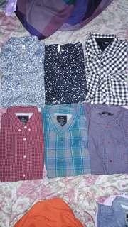 Long sleeves polo 200-350 each Zara H&M Uniqlo Cotton On