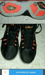 Labron flywires