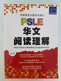 Free PSLE Chinese Comprehension