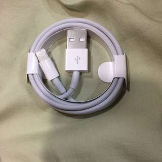 Iphone 原廠充電線 充電器 Original Apple Lighting charger cable