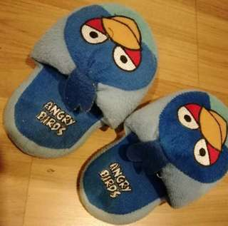 Angry bird (in the house shoes)