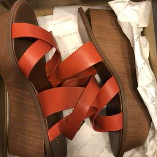 Charles & Keith Platform Strappy Shoes