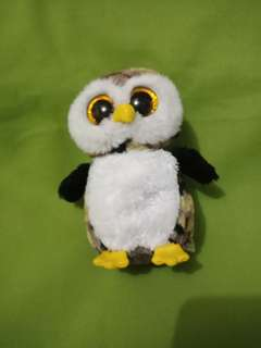TY OWL