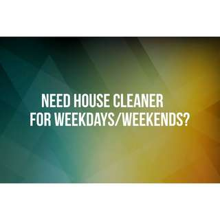 Cleaner (House)