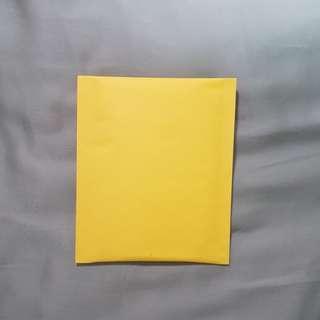 Bubble Wrap envelope