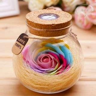 *Clearance* Everlasting Rainbow Rose in Glass Bottle gift set
