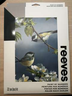Brand New Reeves paint by numbers birds