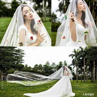 Wedding White 6m Veil