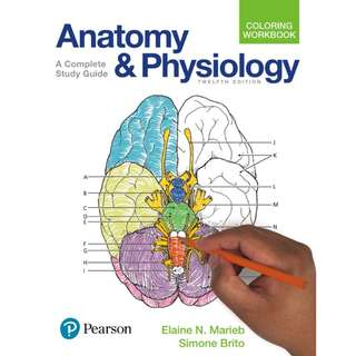Anatomy and Physiology Coloring Workbook A Complete Study Guide 12th Edition