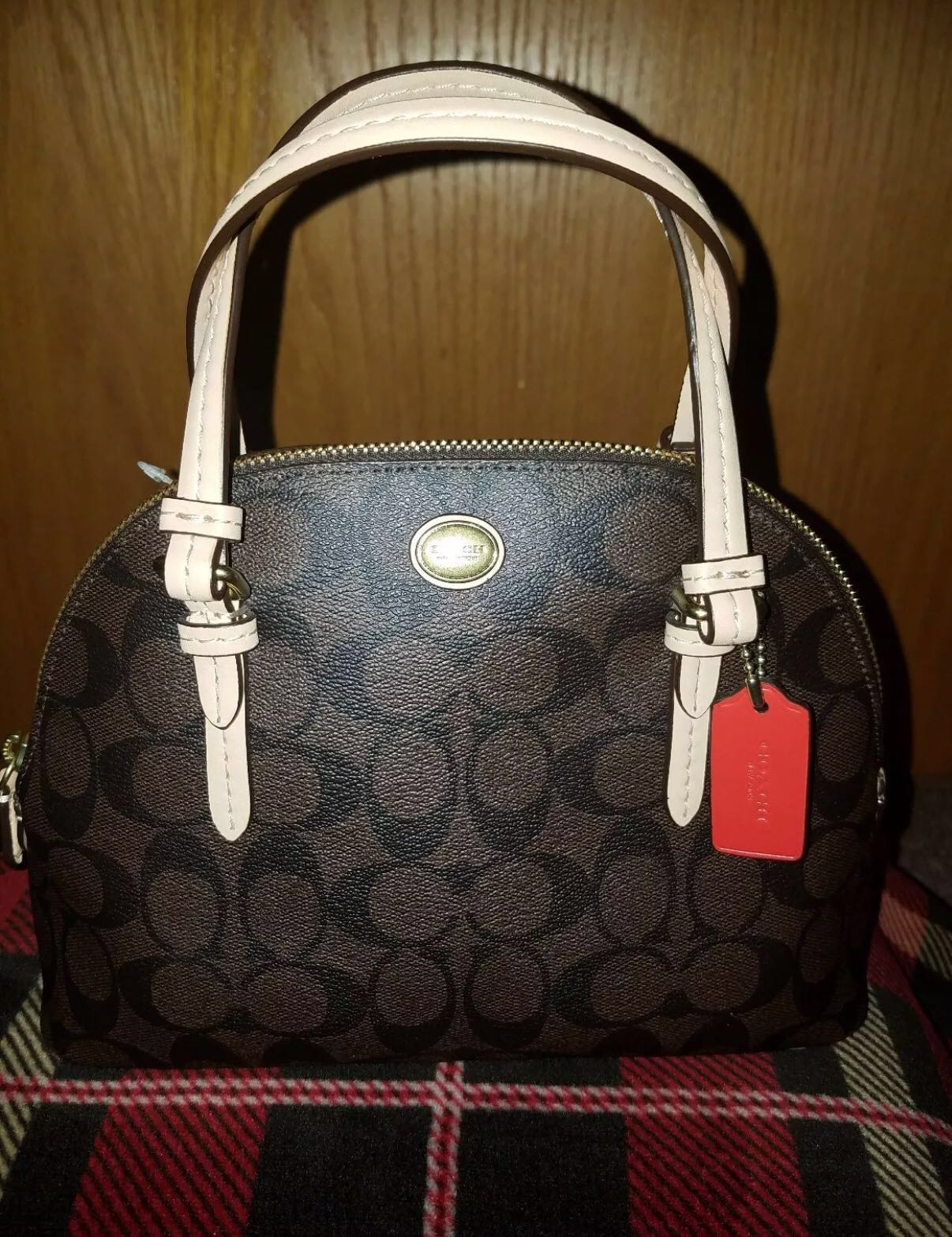 Mother s Day Sale  Coach Peyton Mini Signature Dome Satchel Bag ... 987714cfd43a6