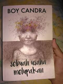 Novel Boy Chandra