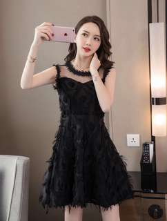 PO : Sizes Available From S To XL. Super Sweet And Classy Korean Style Round Cut Front/Round Cut Neckline/Round Neck Translucent Mesh Feather Lace Sleeveless Skater/Flare/A Line Dress