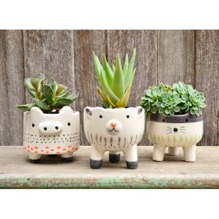 White Ceramic Hand Painted Animal Planters Cat Sheep Pig