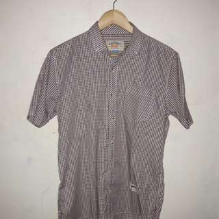 Kameja Buttondown Badger