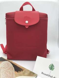 Longchamp bag pack
