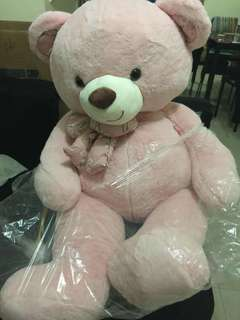 GIANT TEDDY BEAR AT AN AFFORDABLE PRICE (BRAND NEW)