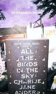 All the birds in the sky book