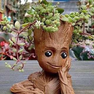 (FREE POSTAGE) Baby Groot Flower Pot