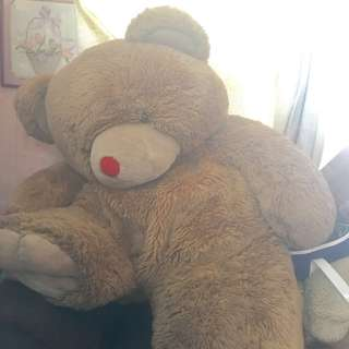 Big Teddy Bear 4-5 Ft
