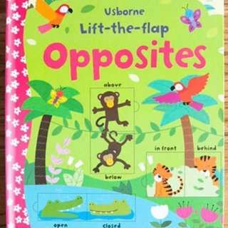 🚚 Usborne Lift-the-Flap Opposites