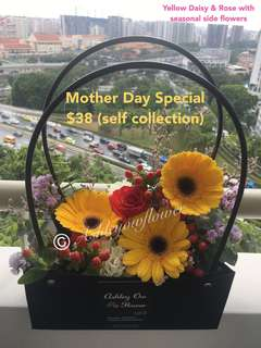 Mother Day Surprise Flower | Mother