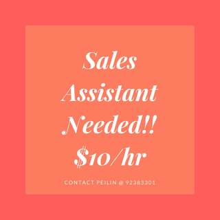 SALES ASSISTANT NEEDED!!