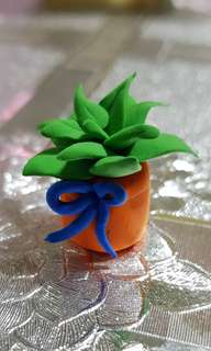 Succulent Clay Mini