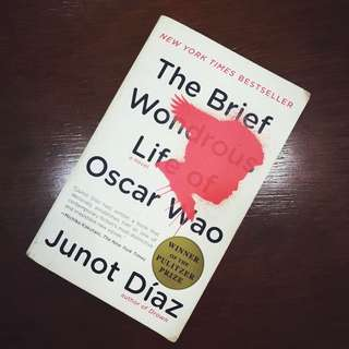 The Brief Wondrous Life of Oscar Wao (Junot Díaz)