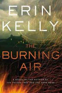 eBook - The Burning Air by Erin Kelly