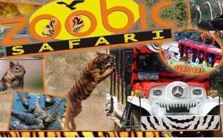 Zoobic Safari Voucher with Lunch