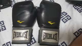 Everlast Boxing Gloves 12 oz / 12oz & Mitts