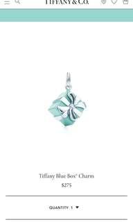 Authentic Tiffany Blue Box Charm