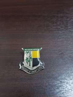 Anderson school badge