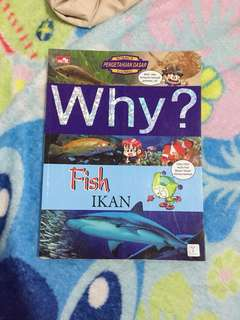 Why? Fish / Ikan