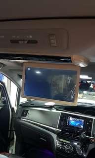 Estima roofmount monitor