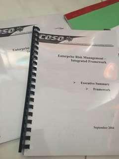 AC3104 ERM Framework