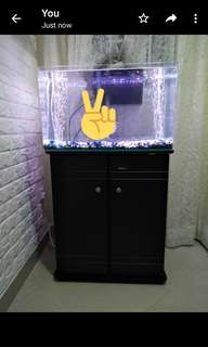 *Aquarium tank*