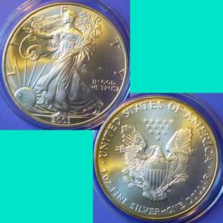 Coin US USA United States of America American Silver Eagle Dollar 2003 P Silver Content 1 oz Toned