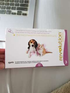 Revolution for dogs and cats (weighing 2.5kg or less)