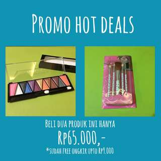 HOT DEAL PROMO Eyeshadow and Blushon Palettes and Brush