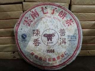 陳香普洱茶