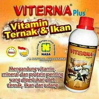 VITERNA Vitamin Ternak