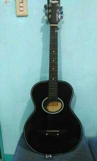 Fissler Guitar