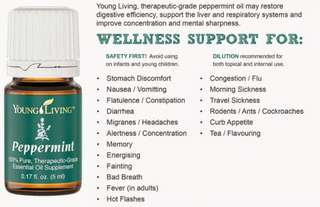 PEPPERMINT YOUNG LIVING 15ml from YLIndonesia