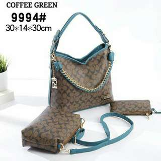 Coach Hobo Bag 3 in 1 Coffee Green Color